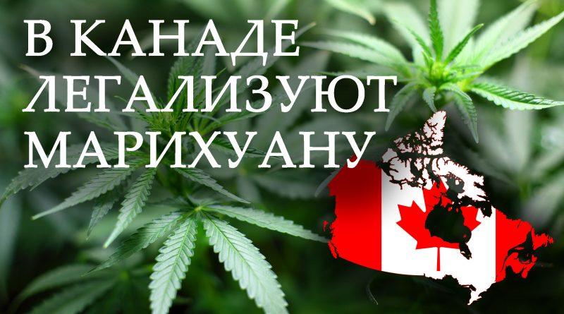 Скоро можно будет купить марихуану онлайн